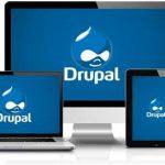 5 Tema Drupal Terbaik Untuk Website Bisnis