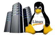 Kenapa Memilih Linux Hosting Untuk Web Server