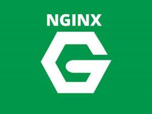 Tips Mempercepat Web Server Nginx