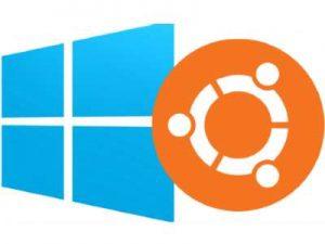 5 Perbedaan Dasar Windows vs Linux
